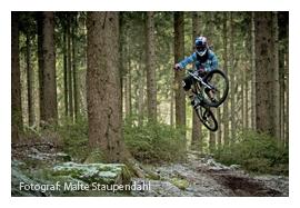 Downhill - So könnte es bald aussehen!
