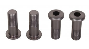 Lapierre spare part screw set grey for drop outs DH Pendbox (4 Stk.)