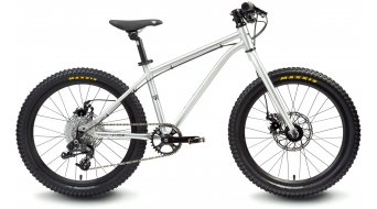 "Early Rider Hellion Trail 20 儿童运动单车 20"" X5 9档位 brushed"