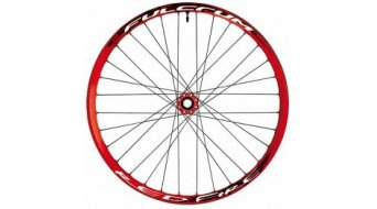 Fulcrum FR / DH Red Fire 26 Laufrad Satz 20mm OS rot IS2000 (Tubeless/Drahtreifen)