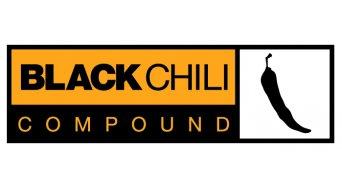 Continental Race King RaceSport Limited Edition Faltreifen 55-559 (26x2.2) schwarz-orange/Logo silber 3/180tpi BlackChili-Compound