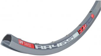 DT Swiss RR 465 Road- rim 32 hole silver double t geöst