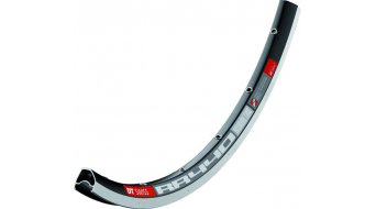 DT Swiss RR 440 asymmetrisch 28 road bike rim hole black