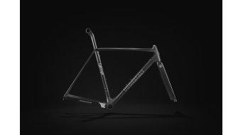 Lightweight Urgestalt Carbon Rennrad Rahmenkit schwarz