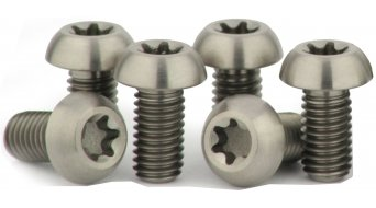 Carbocage titanium screws rotor kit M5x10mm