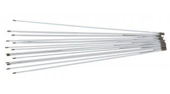 DT Swiss Speiche & Nippel Servicekit Tricon XM 1550