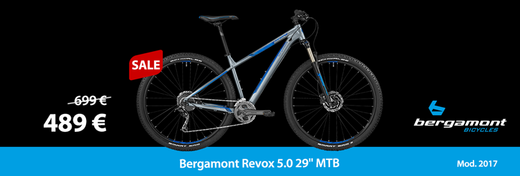 Bergamont Revox 5.0 29 – beginner MTB for a reasonable price