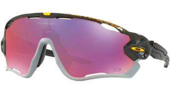 Oakley Jawbreaker PRIZM 眼镜 Tour de France Collection carbon/prizm 公路赛车