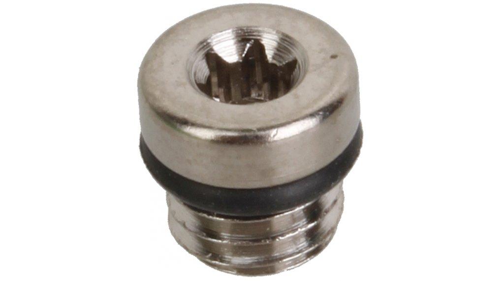 Formula Ersatzteil Entlüftungsschraube + O-Ring TheOne/R1/R1R/RO