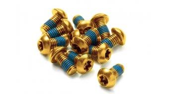 Reverse 碟刹盘螺丝 M5x10mm (12个) 金色