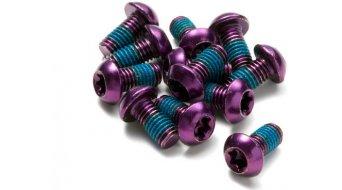 Reverse 碟刹盘螺丝 M5x10mm (12个) purple