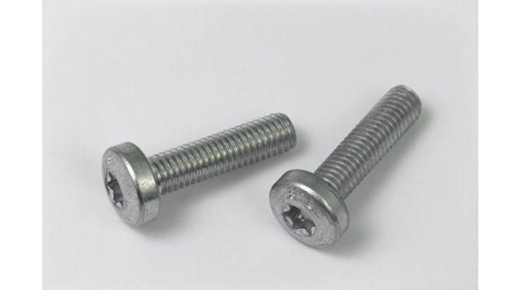 Bosch Schrauben-Set, Innensechskant M5x20, für Befestigung Rahmenakku