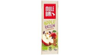 MuleBar Apple Raisin Cinnamon (apple/raisins/cinnamon ) 40g- bar