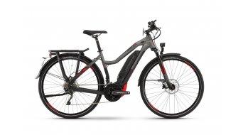 """Haibike SDURO Trekking S 8.0 28"""" E-Bike Komplettrad Damen schwarz/titan/rot matt Mod. 2020"""
