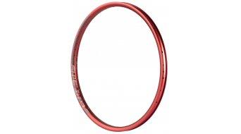 Dartmoor Shield 24 车圈 红色
