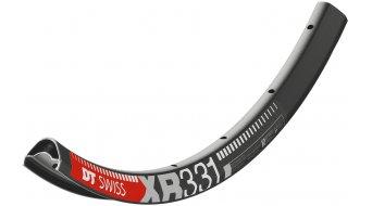 DT Swiss XR 331 29 碟刹 MTB(山地) 车圈 孔 黑色 含有DT Squorx PRO Head 条母 2.0x15mm + 垫片