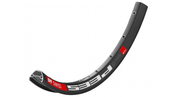 DT Swiss 533d 碟刹 MTB(山地) E-Bike/Enduro 车圈 孔 黑色