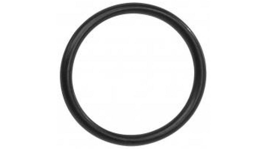Bosch O-Ring zur Montage des Kettenblatts (ohne 1.270.014.444)