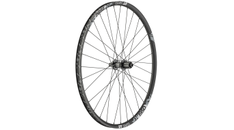 "DT Swiss H 1950 Classic 29"" MTB wheel wheel 25mm-rim length Centerlock/IS- adapter 2018"