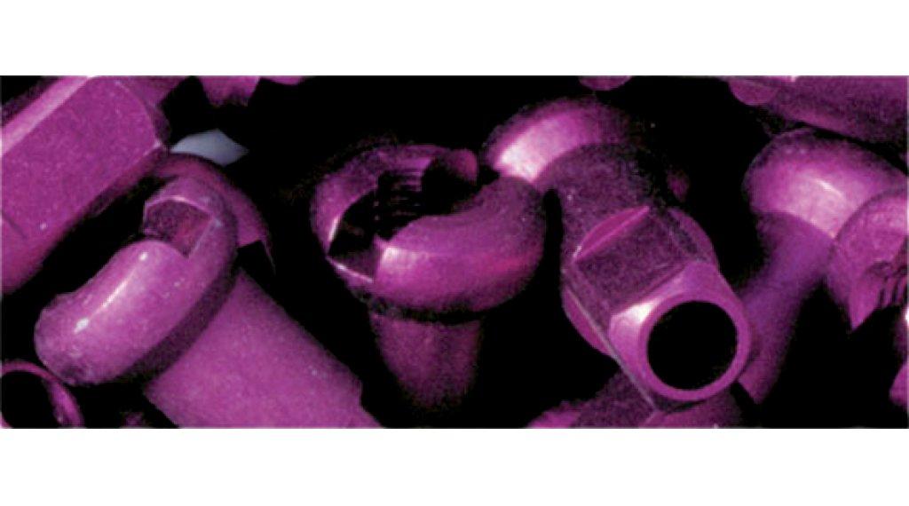 DT cabecilla(-s) de aluminio 2.0mm 2.0x12mm morado