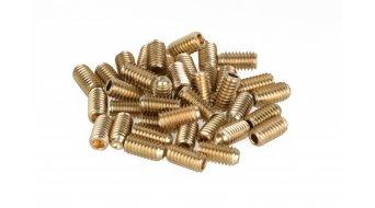 HT Components acciaio pins di ricambio M4x6mm (20 pz) per HT DH-Race X1 pedali