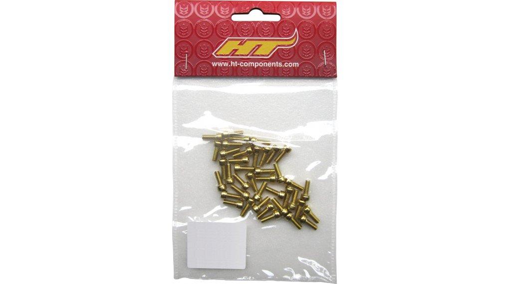 HT Components SAP Ersatzpins M3x8mm gold