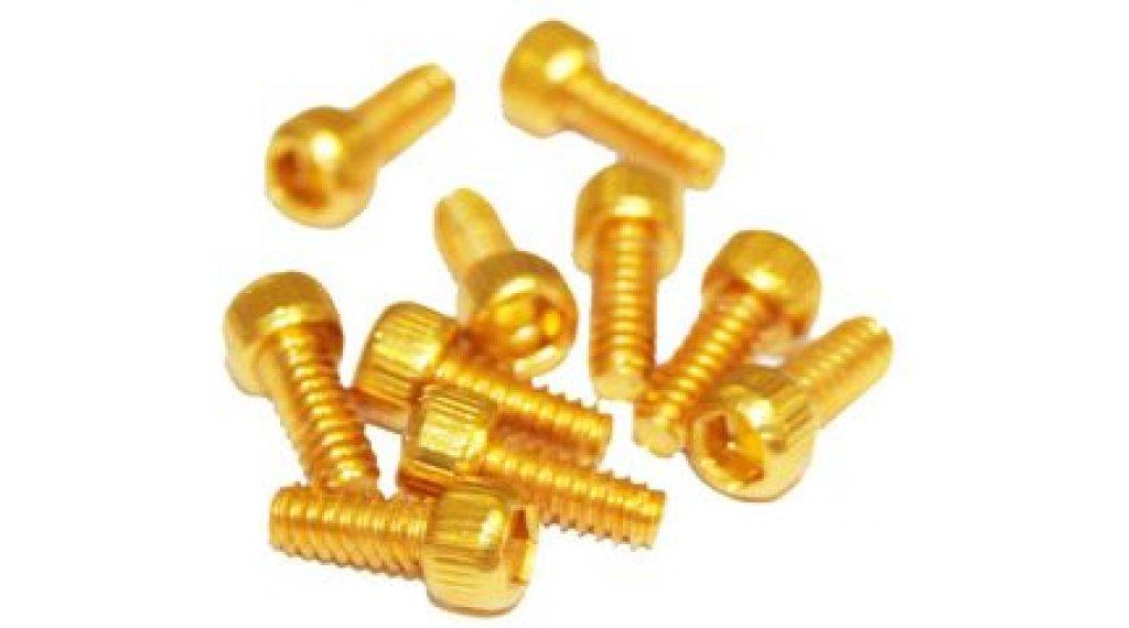 Reverse Alu 替换pins US Size Pins 11mm 适用于 BlackOne 和 Escape PRO-脚踏 (10个) 金色