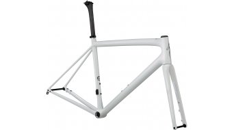 Specialized Aethos 28 road bike frame kit size 58cm gloss abalone/satin holographic 2021