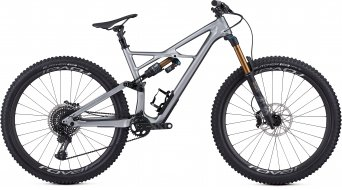 "Specialized S-Works Enduro FSR Carbon 6Fattie 29"" MTB(山地) 整车 型号 M flake silver/tarmac black 款型 2019"