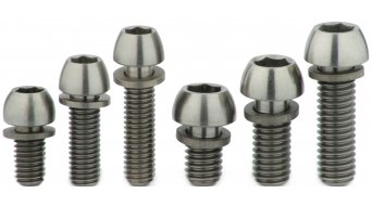 Carbocage titanium screw