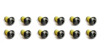 Magura mounting screws rotor from steel, torx M5 (12 pcs)