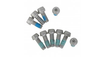 Magura IS- screws T25 (10 pcs)