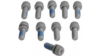 Magura PM- screws torx T25 (10 pcs)