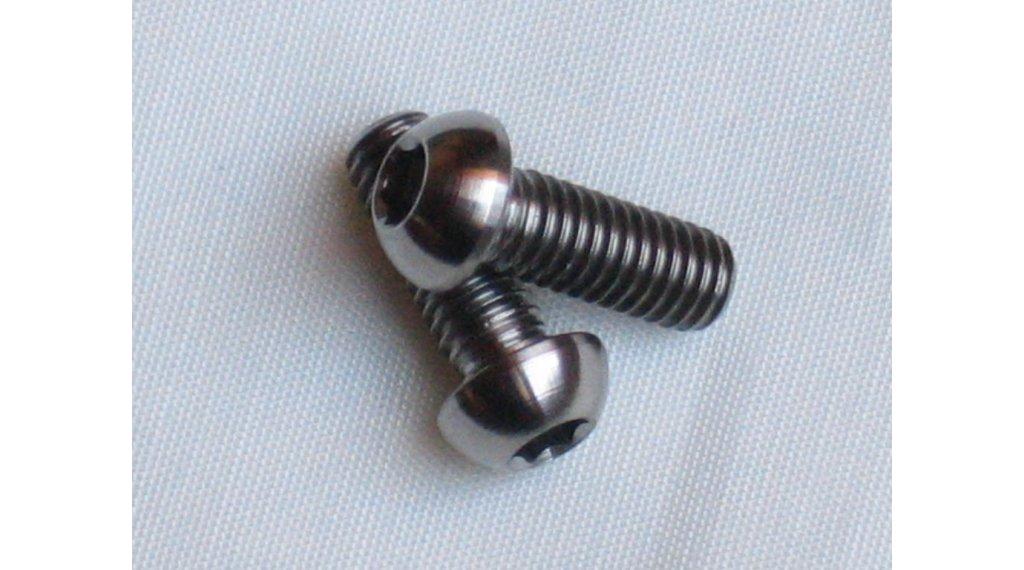 Tune titanium M6x16 binnenzeskant- schroef lenskop voor remzadelbevestiging (paar )