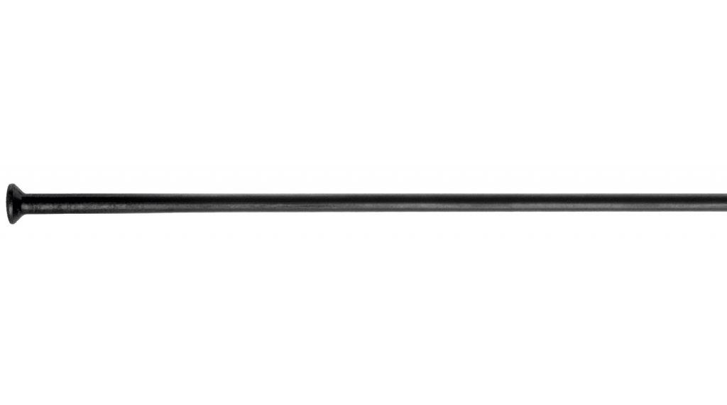DT Champion Speichen gerade 246mm 2.0mm schwarz