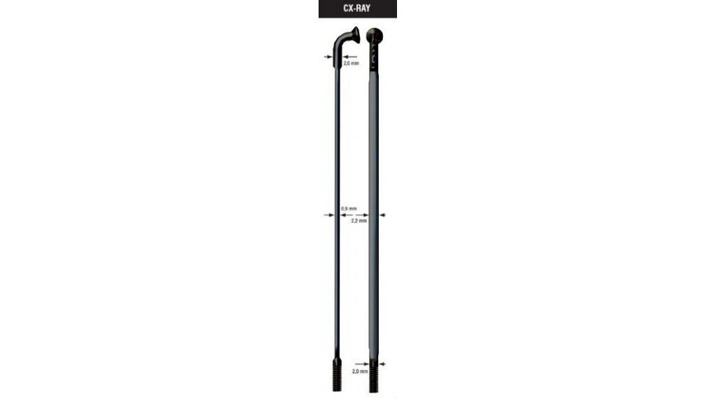 Sapim CX-Ray Messerspeichen 250mm ohne Nippel 2.0-2.2/0.9mm schwarz