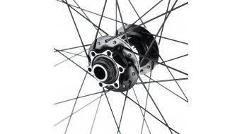 e*thirteen TRS+ 29 碟刹车轮 前轮 (15x100mm) black